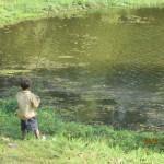 Paikallinen poika kalastamassa Ankor watin lähellä olevalla pienellä järvellä